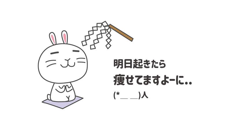 f:id:shiro-usagi:20190527212243j:plain