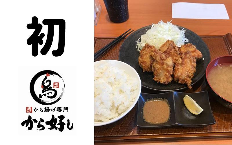 f:id:shiro-usagi:20190601004732j:plain