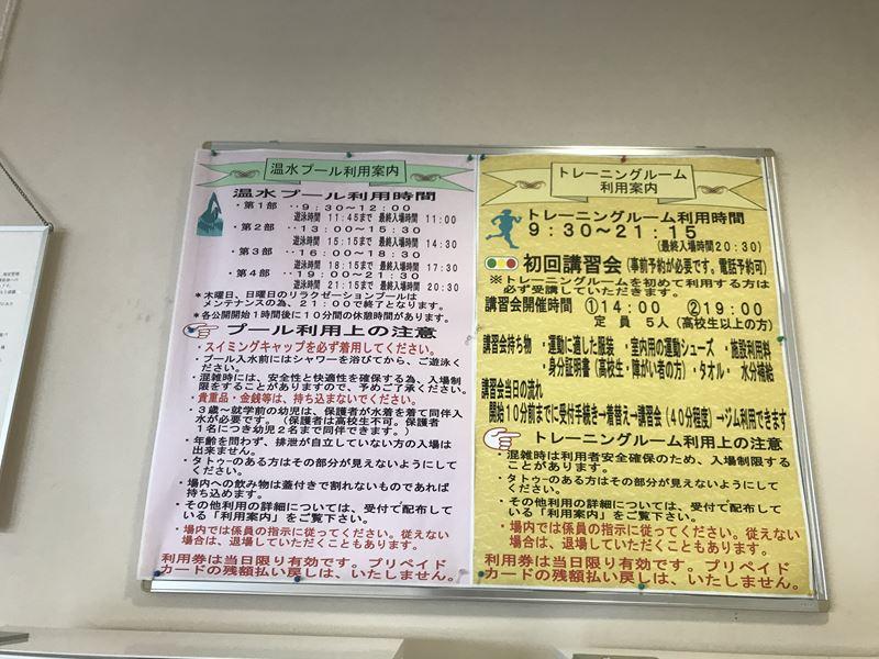 f:id:shiro-usagi:20190601204121j:plain