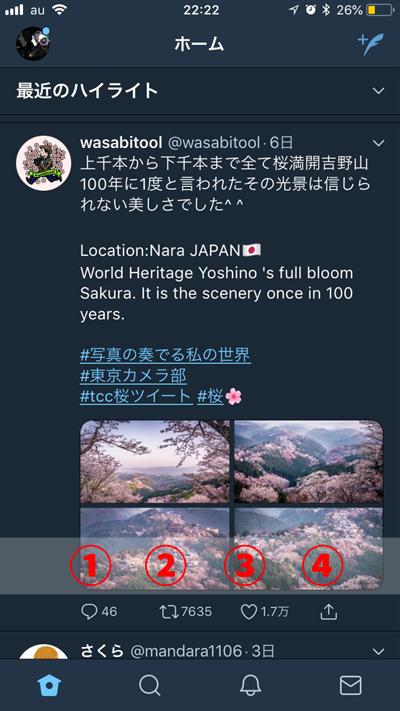 f:id:shiro-usagi:20190607214341j:plain