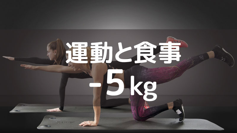 f:id:shiro-usagi:20190824190809j:plain