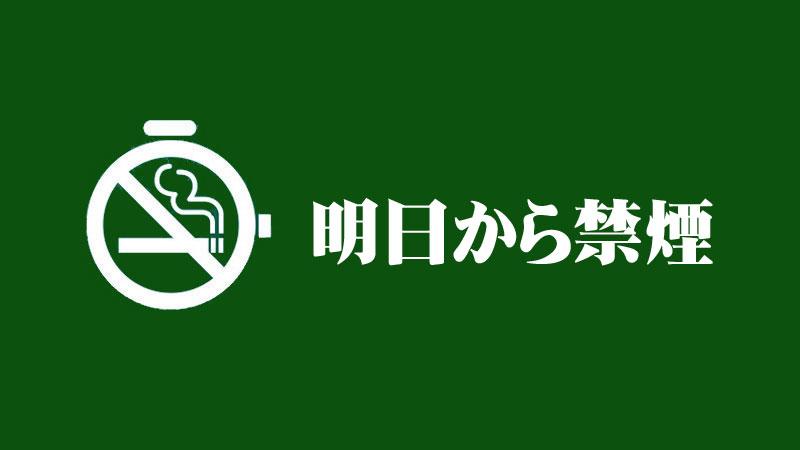 f:id:shiro-usagi:20191123225925j:plain