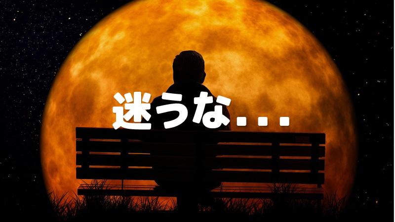 f:id:shiro-usagi:20200226220929j:plain