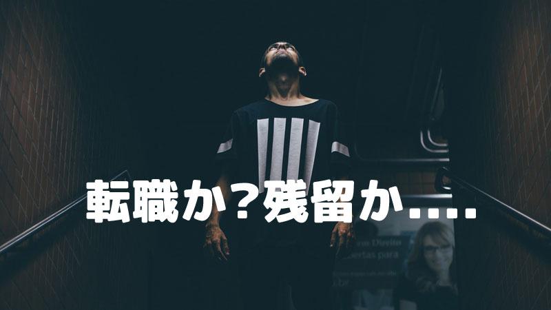 f:id:shiro-usagi:20200308204605j:plain