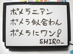 f:id:shiro0922:20081129223650j:image