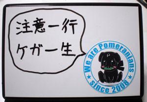 f:id:shiro0922:20081204183949j:image