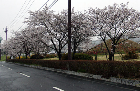 f:id:shiro0922:20100416170635j:image