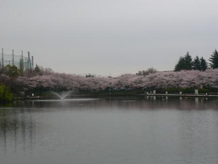 f:id:shiro_96:20100404151444j:image