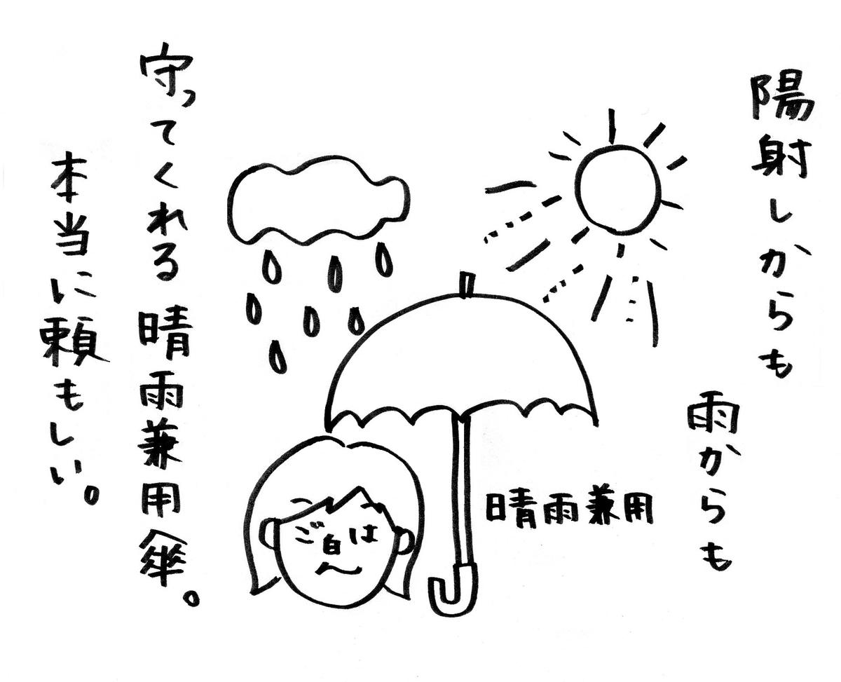 f:id:shiro_gohan:20200524212453j:plain