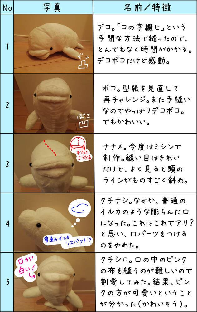 f:id:shiro_iruka:20190308230839j:plain