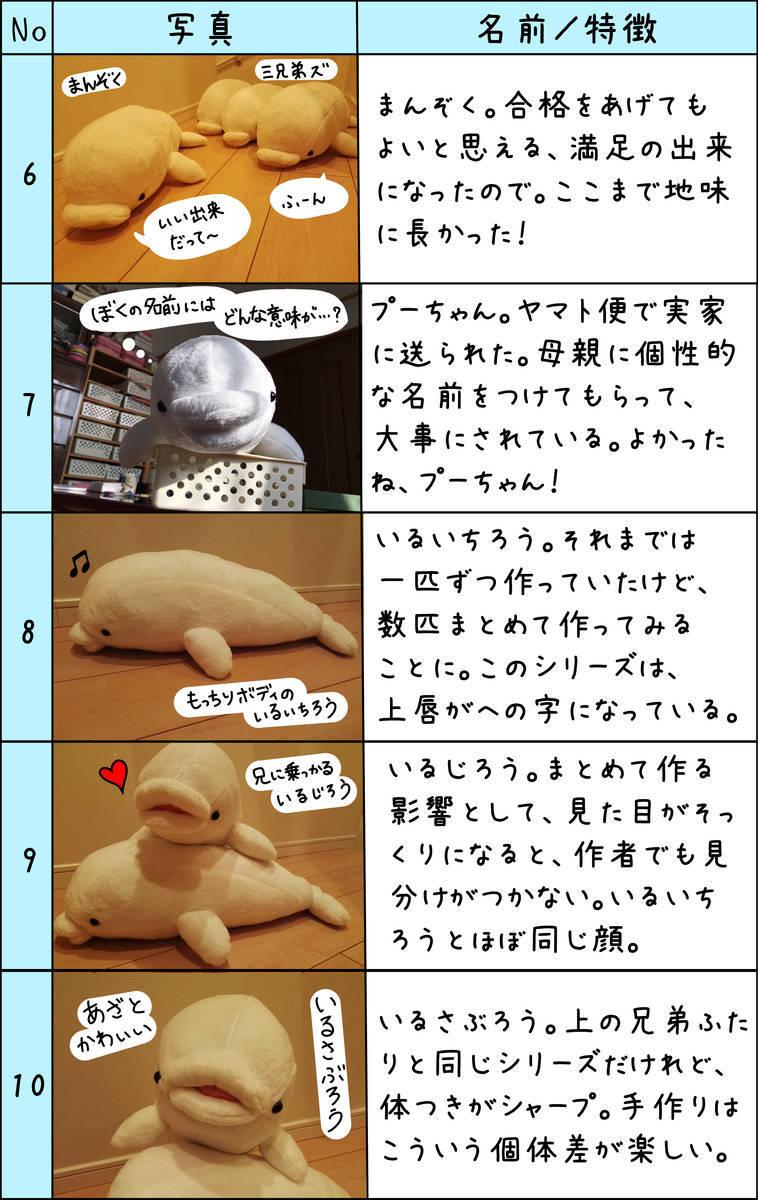 f:id:shiro_iruka:20190311231746j:plain