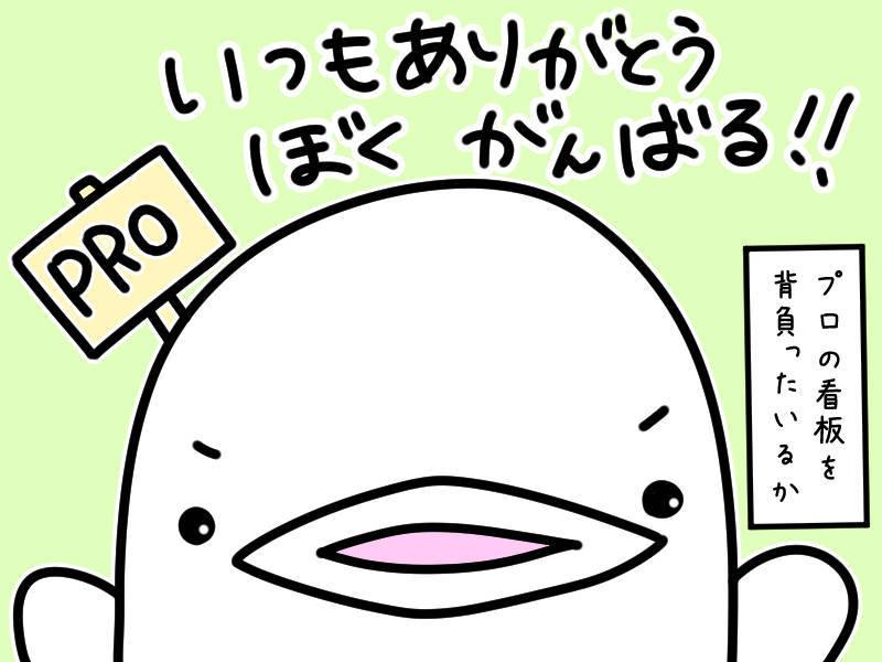 f:id:shiro_iruka:20190417021459j:plain