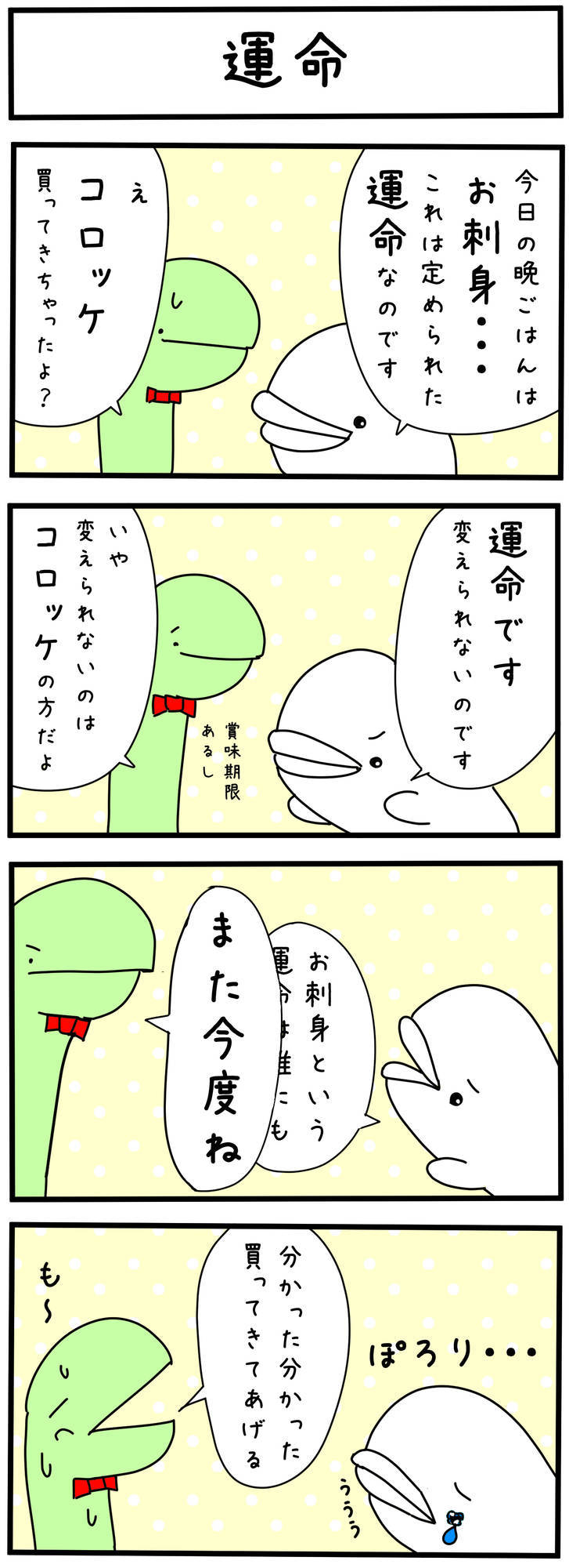 f:id:shiro_iruka:20190417222051j:plain