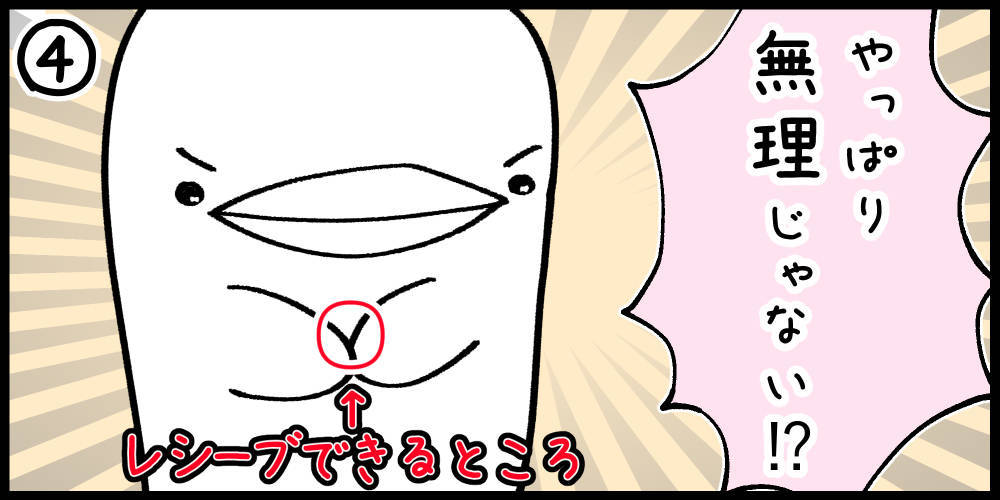 f:id:shiro_iruka:20190517000903j:plain