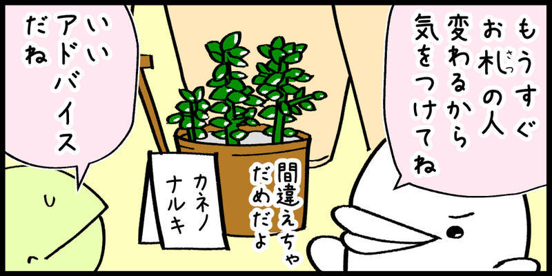 f:id:shiro_iruka:20190520221255j:plain