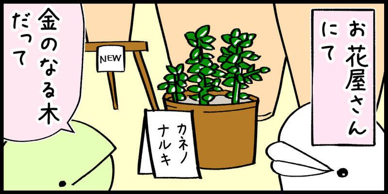 f:id:shiro_iruka:20190520221304j:plain