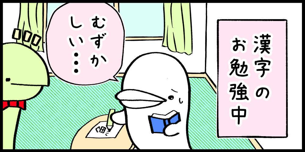 f:id:shiro_iruka:20190521214428j:plain