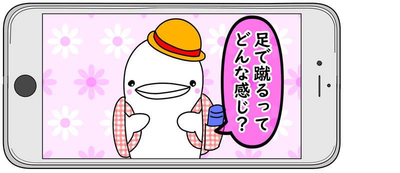 f:id:shiro_iruka:20190522220245j:plain