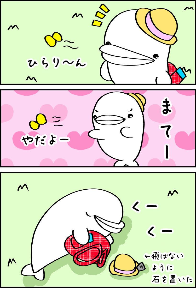 f:id:shiro_iruka:20190526211323j:plain