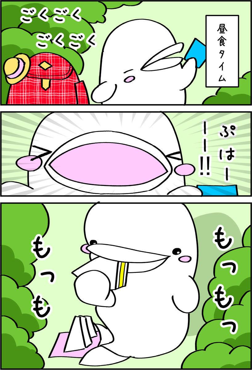 f:id:shiro_iruka:20190526211334j:plain