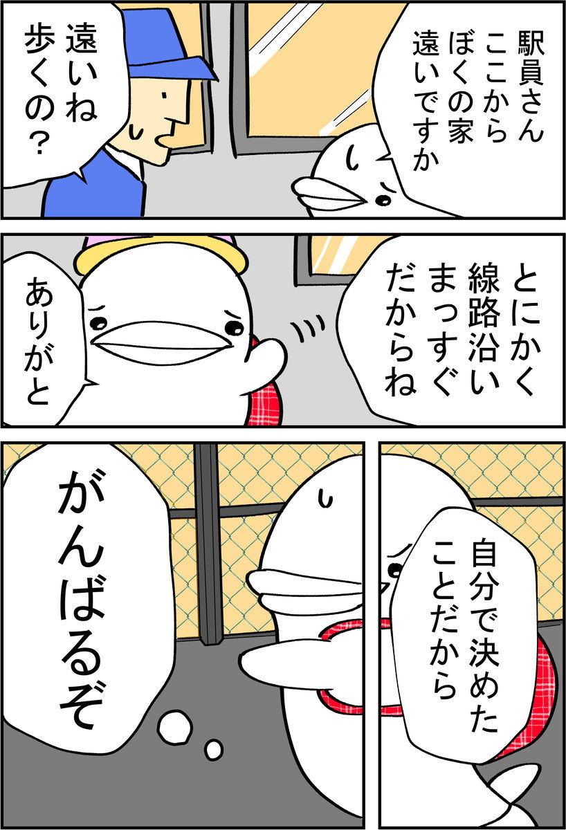 f:id:shiro_iruka:20190526211511j:plain