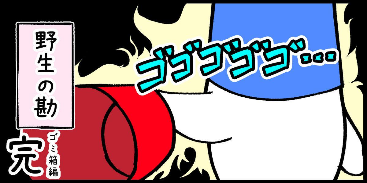 f:id:shiro_iruka:20190611211025j:plain