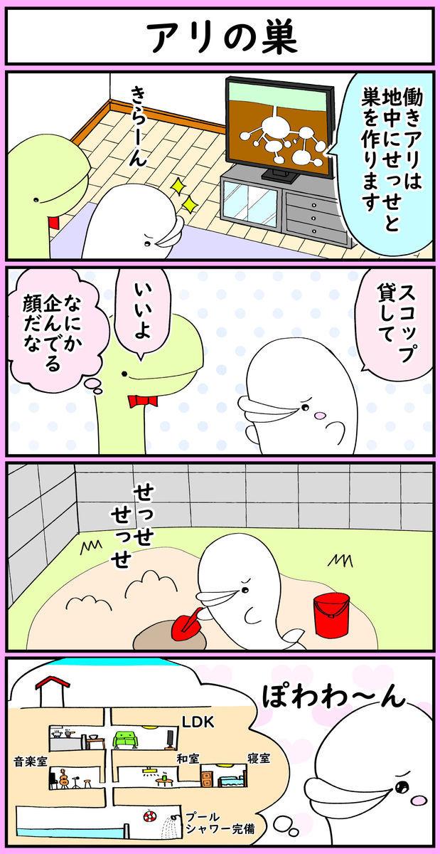 f:id:shiro_iruka:20190715155739j:plain