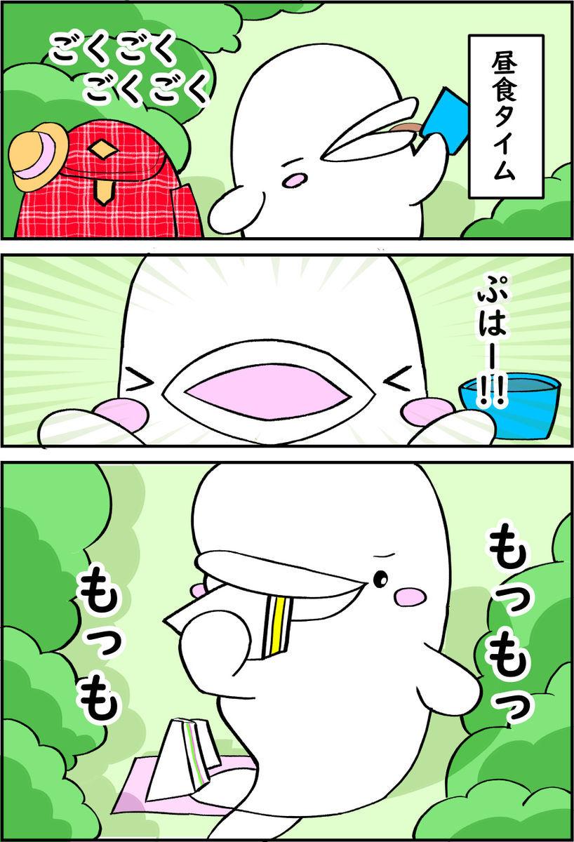 f:id:shiro_iruka:20200127234523j:plain