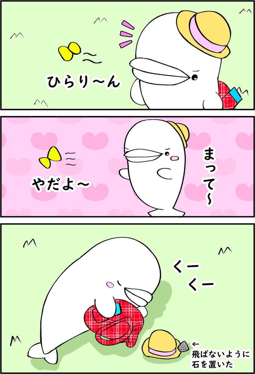 f:id:shiro_iruka:20200127234528j:plain