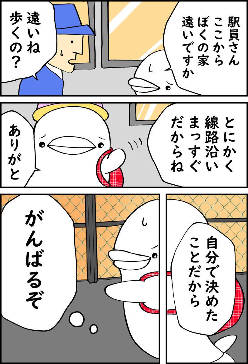 f:id:shiro_iruka:20200127234617j:plain