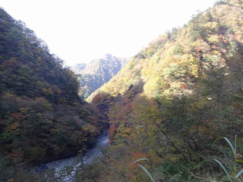 f:id:shiro_mokako:20161118220833j:plain