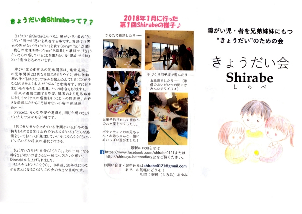 f:id:shiroayu:20180430053448j:plain