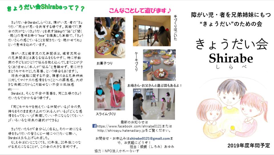 f:id:shiroayu:20190326141130p:plain