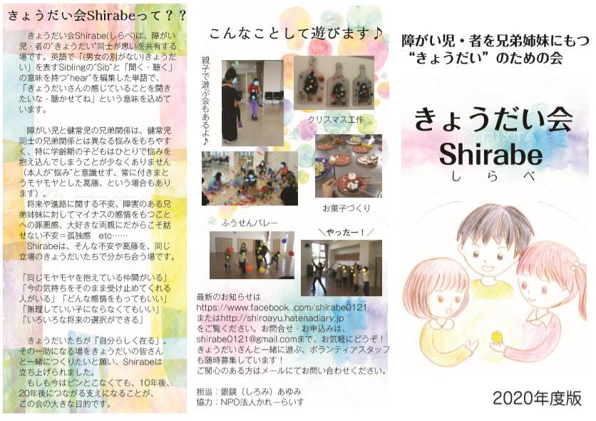 f:id:shiroayu:20200307131652p:plain