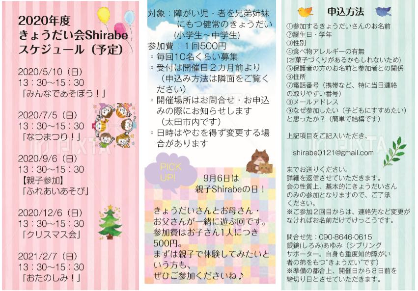 f:id:shiroayu:20200307131711p:plain