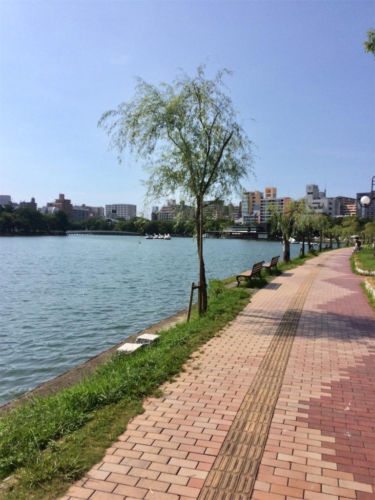 f:id:shirocan:20210411170742j:image