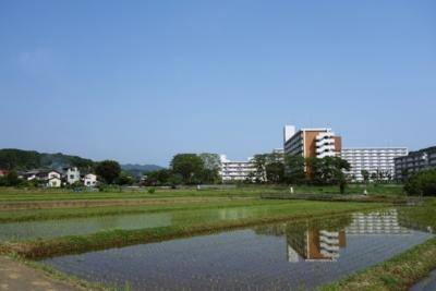 f:id:shirochari:20180527144920j:image