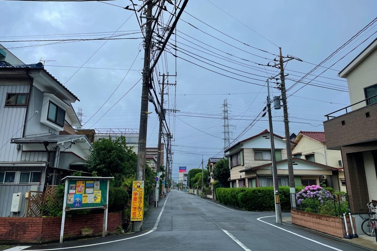 f:id:shirochari:20210619210054j:plain:w300