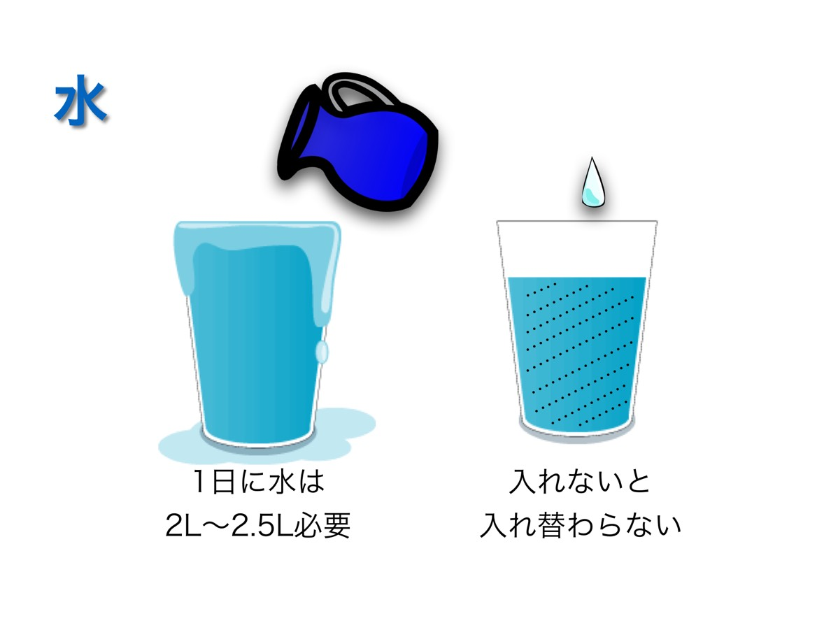 f:id:shirococco:20190428104820j:plain