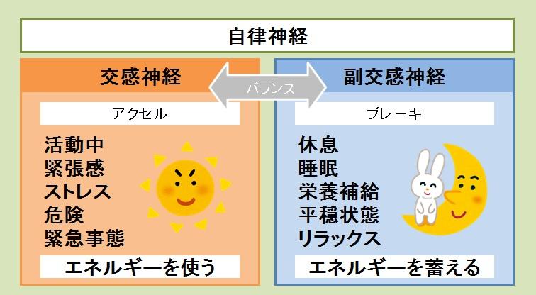 f:id:shirococco:20190726174205j:plain