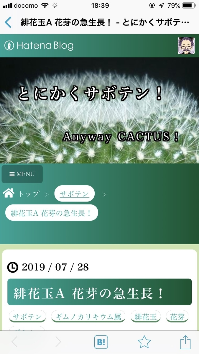 f:id:shirococco:20190728191041j:plain