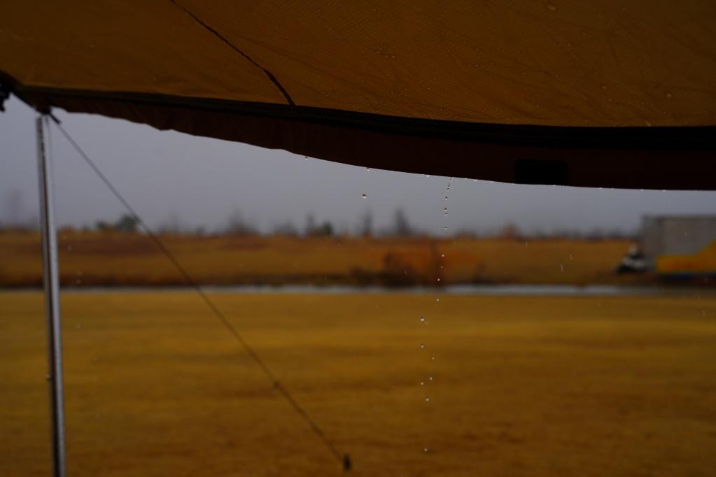 f:id:shirodango:20210322002009j:plain