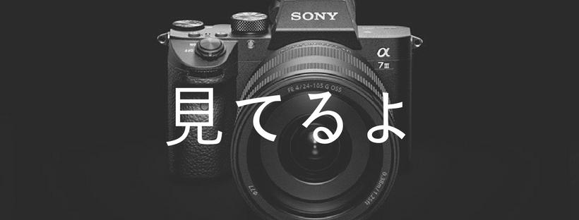 f:id:shirofilm:20180401231918j:plain