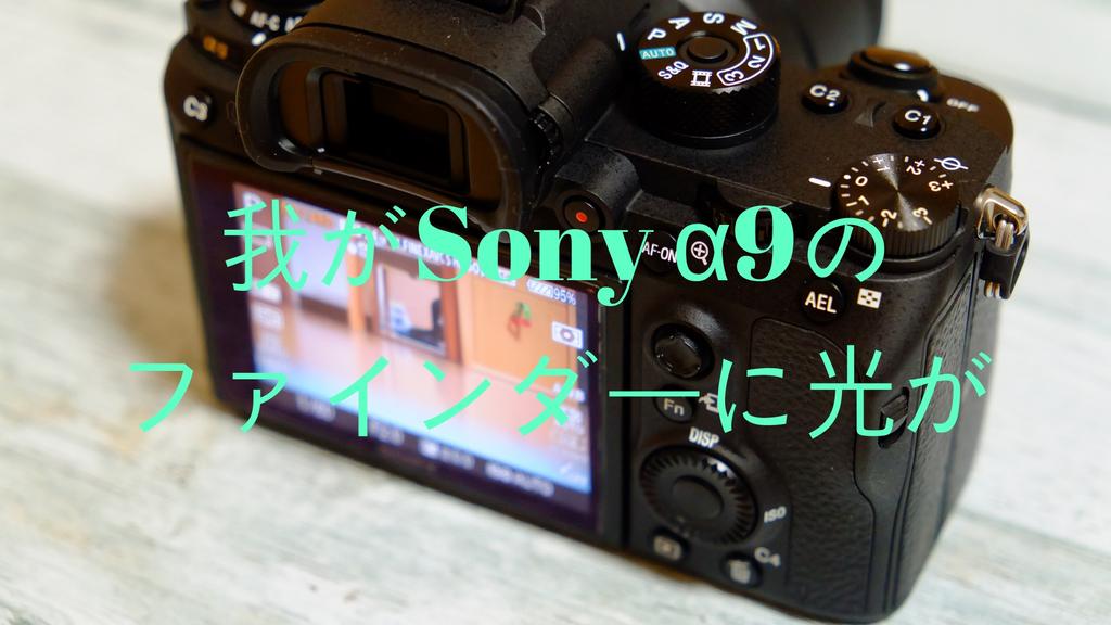 f:id:shirofilm:20181114213727j:plain