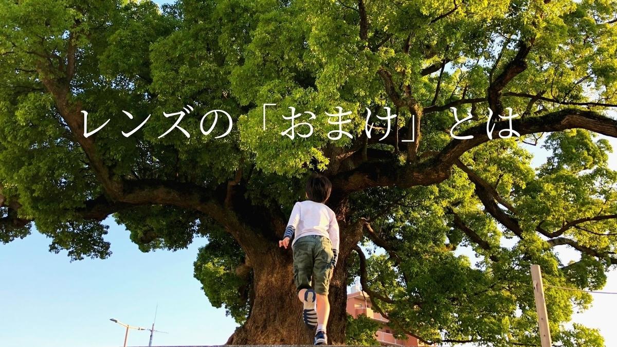 f:id:shirofilm:20210608220513j:plain