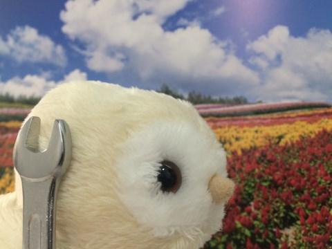 f:id:shirofukurokun:20151116214545j:plain