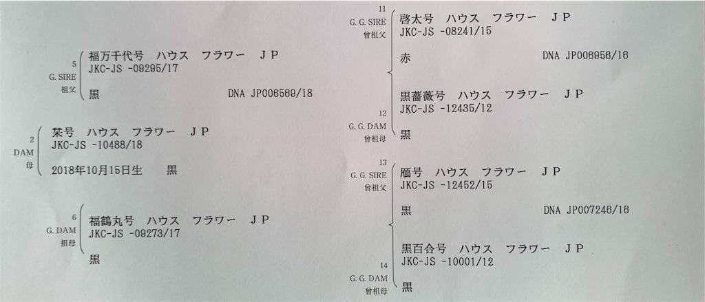 f:id:shiroi_okome:20200810145412j:image