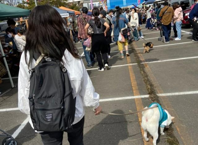 f:id:shiroi_okome:20201020191840j:image