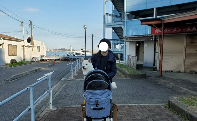 f:id:shiroi_okome:20201212145950j:image