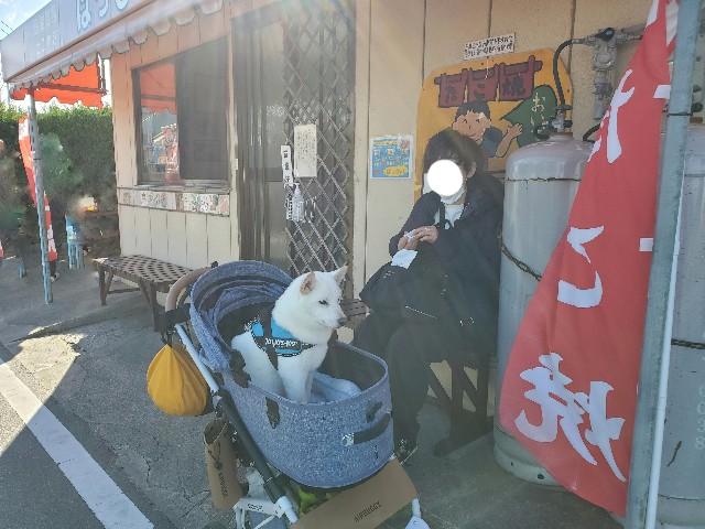 f:id:shiroi_okome:20201218150220j:image